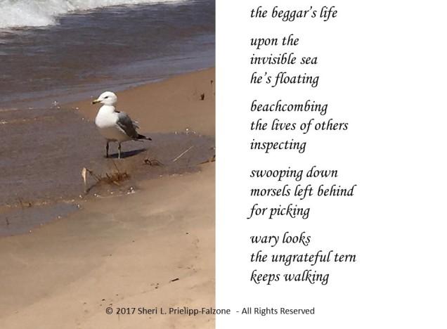 beggars-life