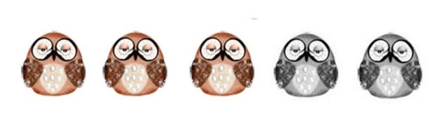 1 to 5 Hoot Scale - 3 hoots