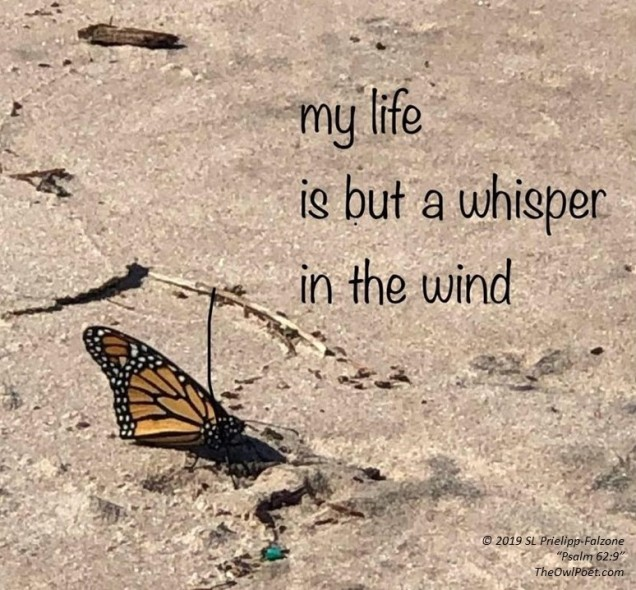 My Life is a Whisper